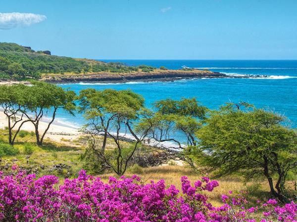 isla-hawaii