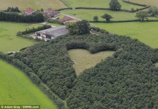 granjero-romantico