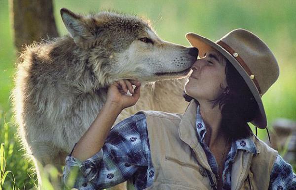 Pareja de investigadores adopta lobos salvajes