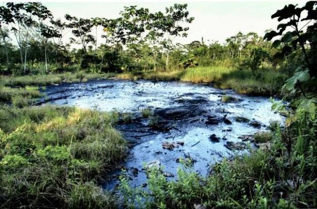 Llega a Argentina el mayor embargo por daño ambiental de la historia