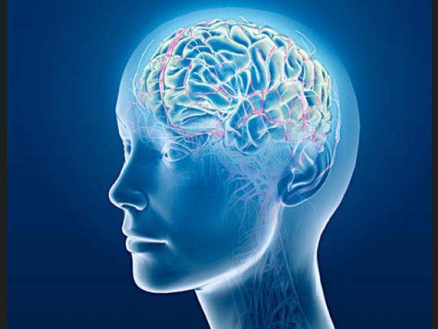 Cicatrices del abuso sexual en el cerebro