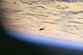 ¿La NASA borró imágenes de extraterrestres?